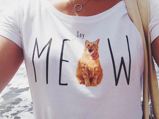 say_meow_rudomi_mn