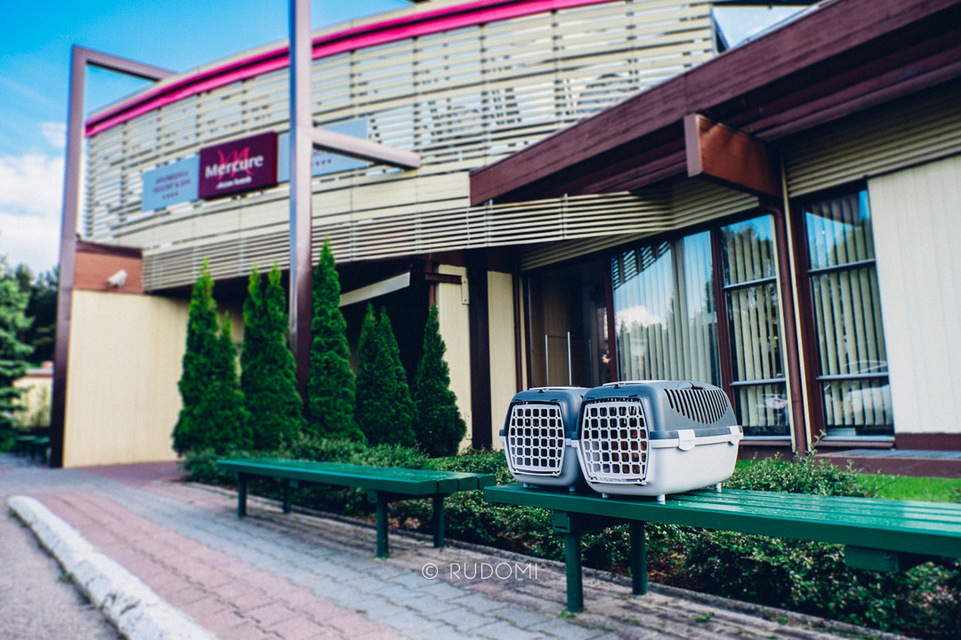 Rysiek i Marchewka w hotelu Mercure Mrągowo Resort & SPA