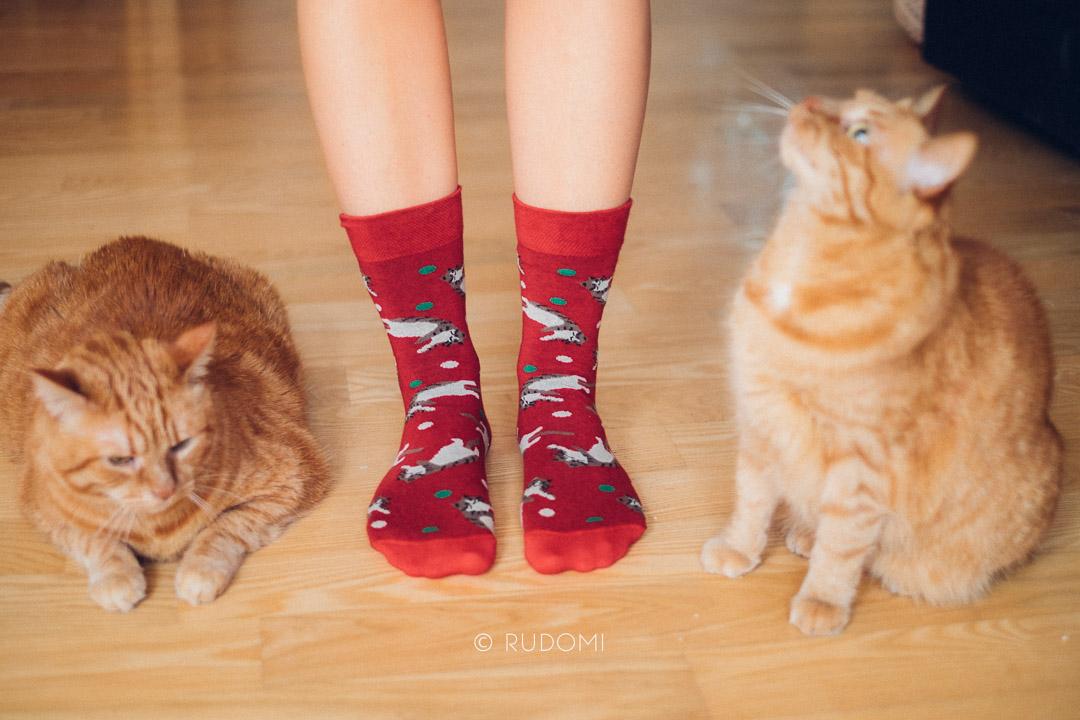 Skarpety w koty - kot w worku - kabak - rudomi